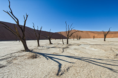 Deadvlei landscapes - Big daddy in the background