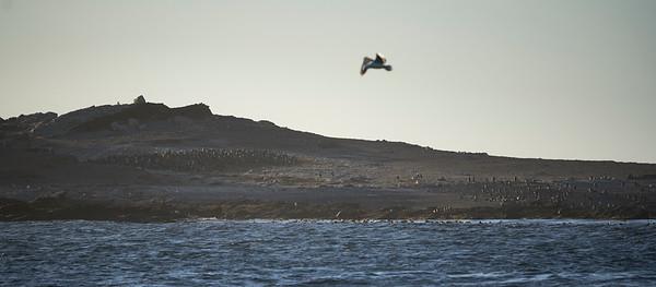 Lüderitz Diaz Point