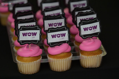 WOW Airlines Press Conference 8-24-2017