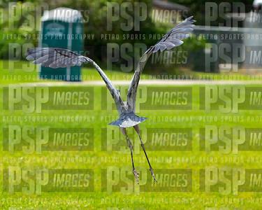 051113_WSHS_Athletic_golf_Tournament_- 1305