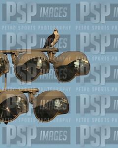PSP_4346