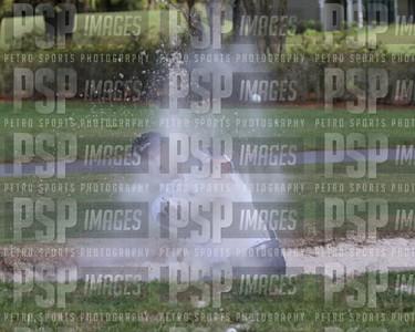 PSP 2233