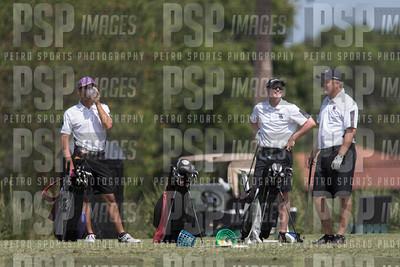 PSP 2334