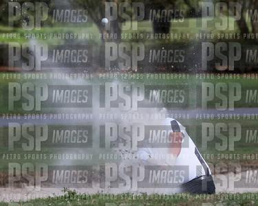 PSP 2238