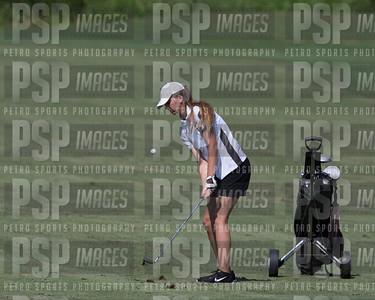 PSP 2457