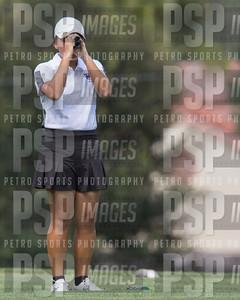 PSP 2397