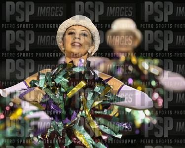 PSP_5207
