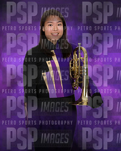 PSP_4161