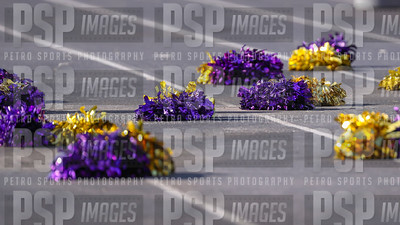 PSP_9598