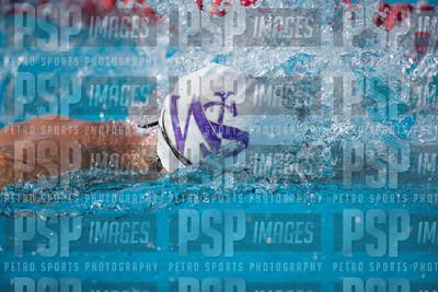 PSP_0685