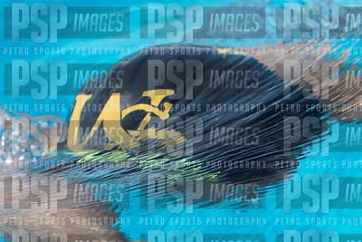 PSP_0745