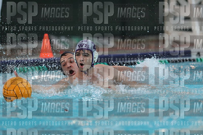 PSP_IMAGES