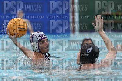 PSP_IMAGES (13)