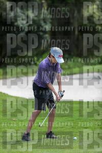 PSP_3104