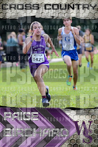PAIGE BIRCHARD X COUNTRY POSTER 24X36