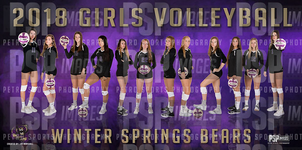 2018 Volleyball 24x48 poster