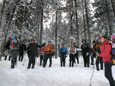 WLA Grp 3 Snow Travel 2011