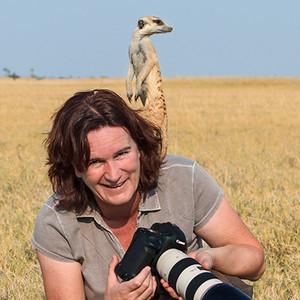 Anette-Meerkat-Shoulder-Profile-Botswana