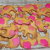 In honor of one of the characters Gaye Marie made Elephant cookies.<br /> Rosie was our favorite characters