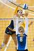 "27035a044xx<br /> See in Gallery: <a href=""http://photos.wvu.edu/2010-Photos/August-2010/27035-Volleyball-vs-Buffalo"">http://photos.wvu.edu/2010-Photos/August-2010/27035-Volleyball-vs-Buffalo</a>"