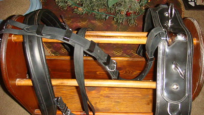 saddle, back-band, breeching