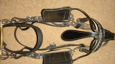 bridle w/patent winkers