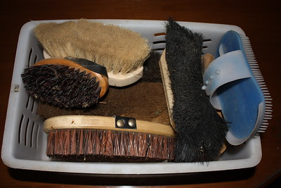 Caddy of natural bristle brushes $15