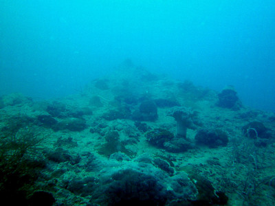 WWII Wreck - Japanese LST Type 1 (Palau 2012-02-01)