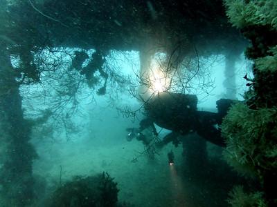 World War II Wrecks -  Palau