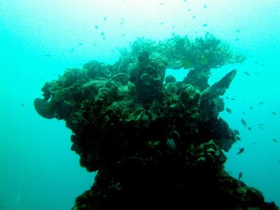WWII Wreck Nagisan Maru (Palau 02-02-2012)