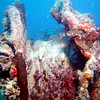 Winch with rope laden with coral on the main deck of the WWII Wreck Nagisan Maru.