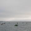 2017 Swim Around the Rock - San Francisco, CA, USA