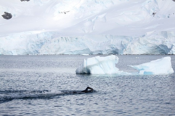 Coach Julieta Swims Antarctica