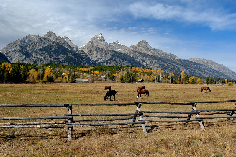 Horse Ranch At The Grand Teton National Park,Wy<br /> Photo #128