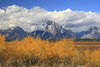 WY GRAND TETON NATIONAL PARK JACKSON LAKE JUNCTION AREA MOUNT MORAN SEPTJG_MG_7284SSW