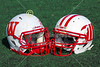 Wabash College Little Giants at Wittenberg University Tigers - Saturday, November 8, 2014