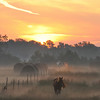 Owen and Clay County Line early morning sunrise
