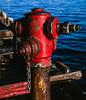 Hydrant, Monterey, California, 1994