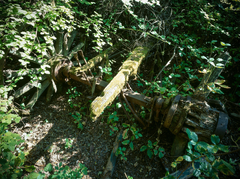 Axle, Los Trancos Open Space Preserve, Palo Alto, California, 1996