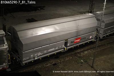 810665290-7_81_Talns