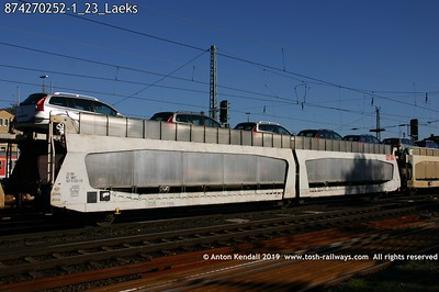 874270252-1_23_Laeks
