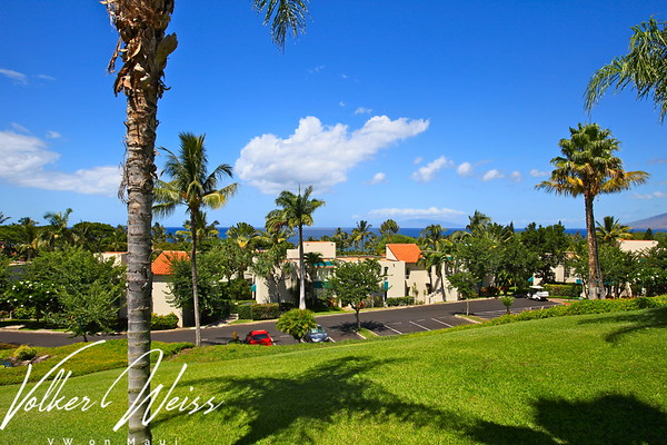 Palms At Wailea 1201