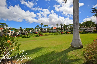 Palms At Wailea 1503 in Wailea, Maui, Hawaii. Research all Wailea Condos for sale, including Palms At Wailea in South Maui, by visiting the superior website of VWonMaui, a partner of the famous 1MauiRealEstate.com project.