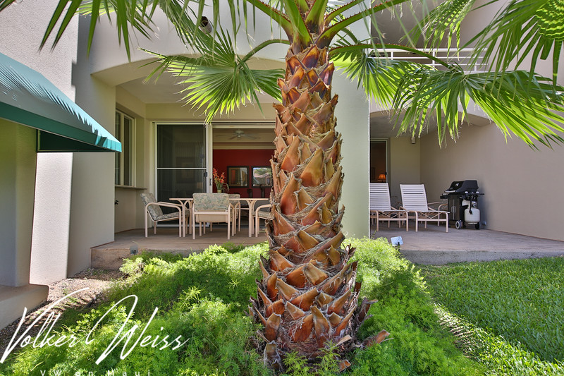 Palms At Wailea 1803