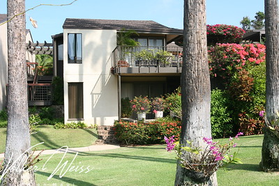 Wailea Real Estate and Wailea Condos including Wailea Elua Condos are viewed best at www.VWonMaui.com