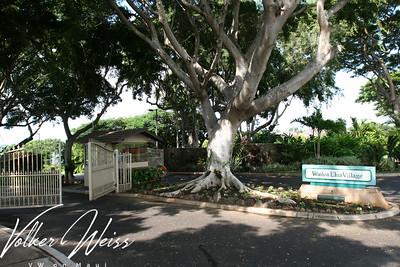 Wailea Real Estate and Wailea Condos including Wailea Elua Condos are viewed best at www.VWonMaui.com