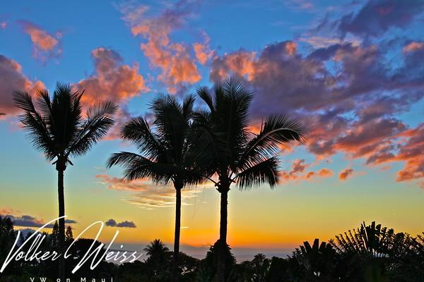 Wailea Palms 2807