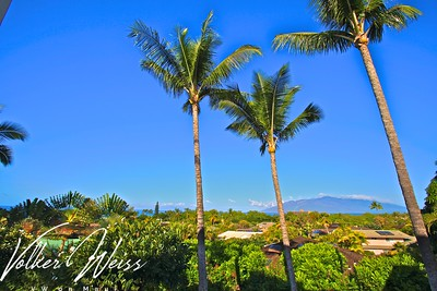 Wailea Palms 2807, Wailea, Maui, Hawaii. Wailea Real Estate and Wailea Condos, including Wailea Palms in South Maui are viewed best at VWonMaui, a partner of the famous 1MauiRealEstate.com project.