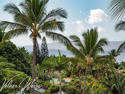 Wailea Palms 3408