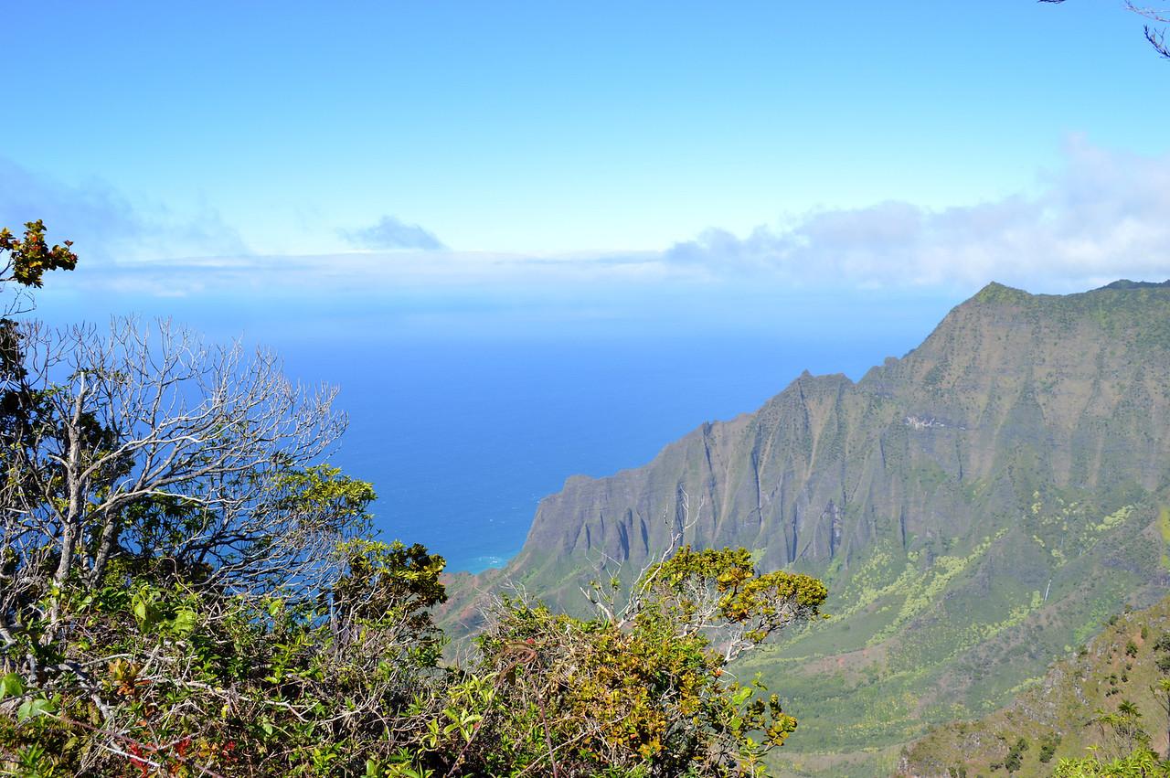 Waimea Canyon meets the sea, Kauai